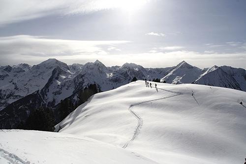 Freeride & Ski Alpy