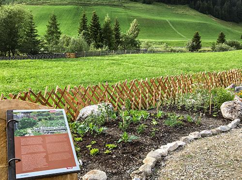 Alpská zahrada